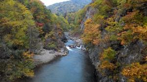 upstream of the Toyohira River